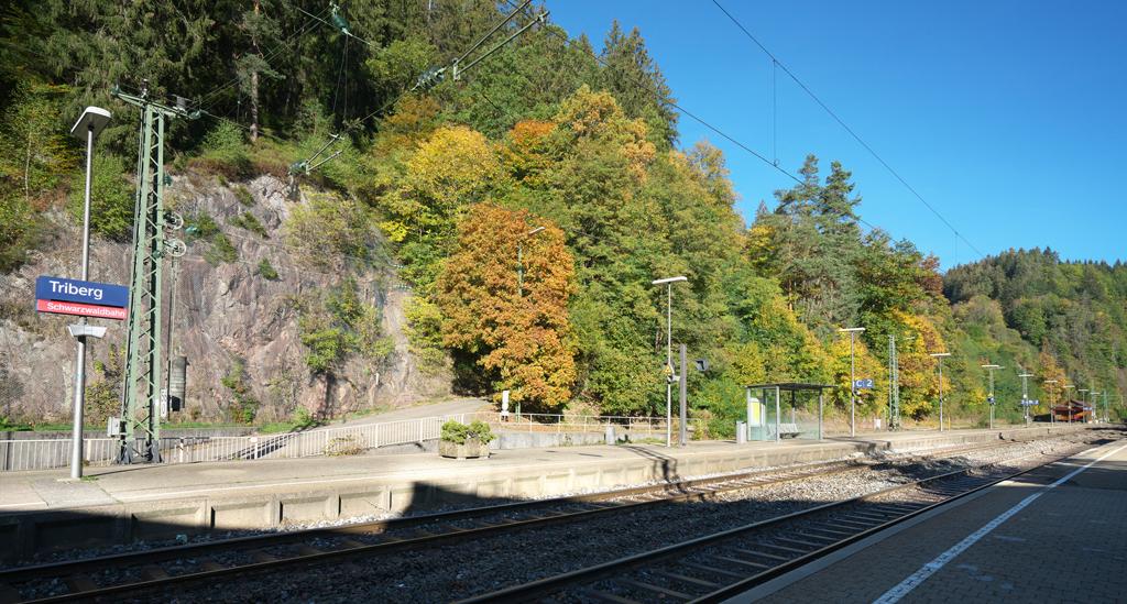Triberg Station